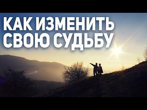Как изменить свою судьбу. Валерий Синельников