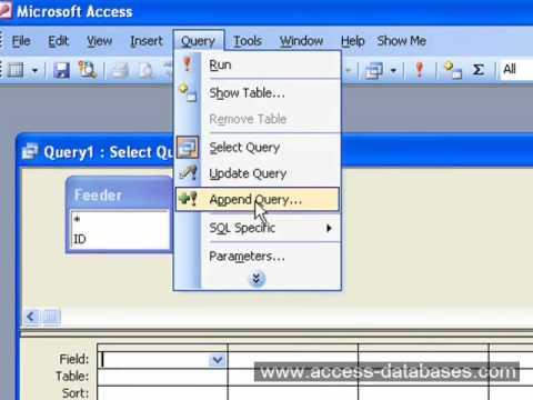 How to Change the MS Access Autonumber