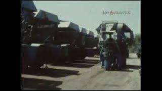 1983 год. Уборка хлопчатника в Узбекистане в условиях небывалой жары.