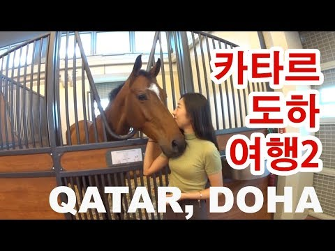 Doha, Qatar Travel-Museum of Islamic art, Al shaqab 카타르 도하여행,승마
