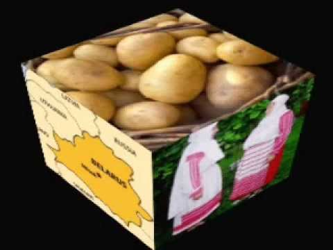 БУЛЬБА (Bulba / Potatoe) - Belarusian song