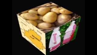 БУЛЬБА (Bulba / Potatoe) - Belarusian song