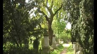 Life Force in the Cemetery - Pt 1 of Tapping in to the Visionary Landscape? Thumbnail