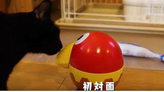 おもちゃのカンヅメ #走るキョロちゃん缶 #CM 【マイナビニュース】 htt...