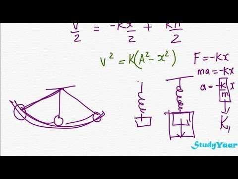 Simple Harmonic Motion & Differential Equations