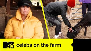 The Girls Cause Chaos In Their First Farm Feeding Challenge | Celebs On The Farm
