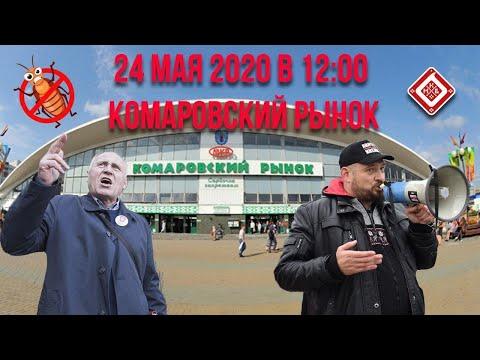 Минск, Комаровка - пикет по сбору подписей кандидата в президенты Тихановской