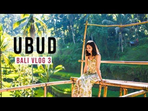 Ubud, Padang Padang Beach, Living in Ubud!   Solo Girl In Bali, Indonesia! Bali vlog #3  