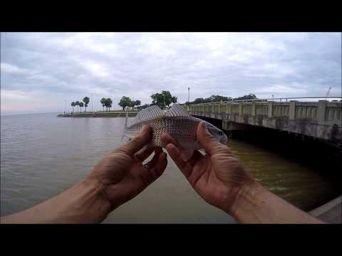 LAND OF THE PINKIE REDFISH!!!  Fishing Lake Pontchartrain and the mouth of Orleans Ave Canal