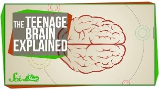 Repeat youtube video The Teenage Brain Explained