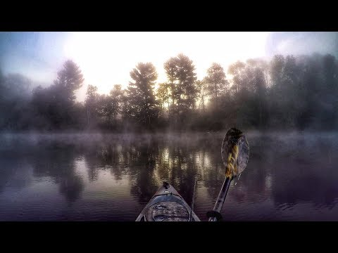 Morning Smallies On A New Lake