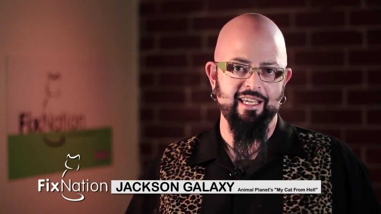 Jackson galaxy from animal planet 39 s my cat from hell talks for Jackson galaxy music