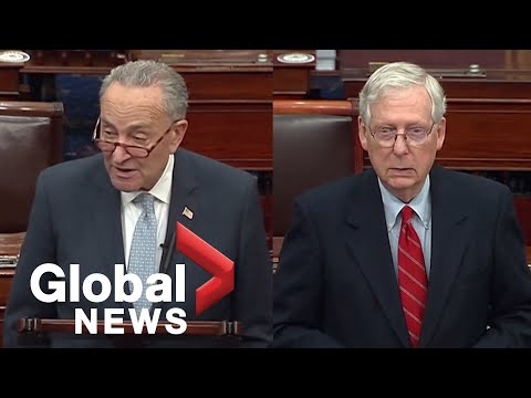 US election: McConnell, Schumer comment on voter fraud allegations