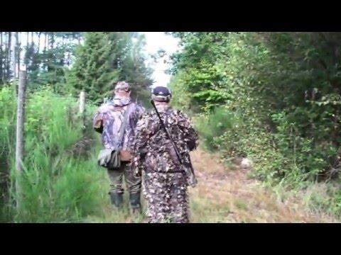Hunting on red deer