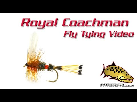 Royal Coachman Classic Dry - Fly Tying Video Instructions