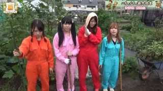 農業アイドル:秋野菜講習