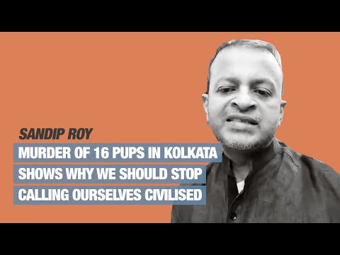 Murder of 16 pups in Kolkata shows why we should stop calling ourselves civilised: Sandip Roy