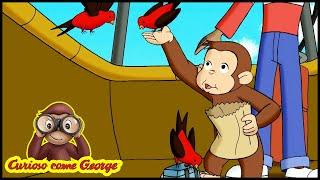 Curioso come George 🐵201 Su, Su e Vola Via🐵 Completo in Italiano 🐵 Cartone Animato 🐵 Stagione 2