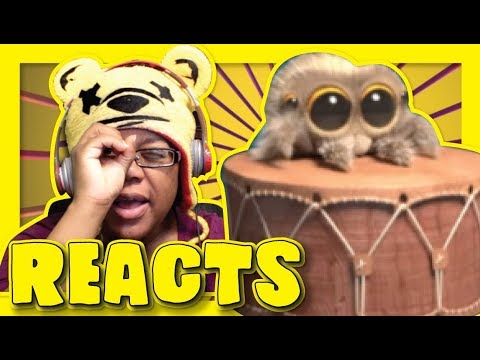 download Lucas The Spider One Man Band | Animation Reaction