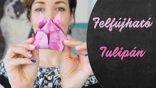 Felfújható origami? | Alkoss ma is valamit! | INSPIRÁCIÓK Csorba Anitától
