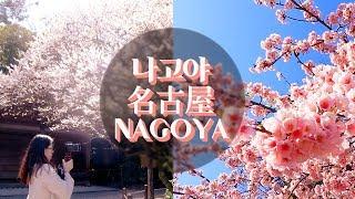 봄이 일찍 온 일본 나고야 여행 브이로그 #1 ???? (나고야성/일본집 방문) / NAGOYA TRAVEL VLOG#1