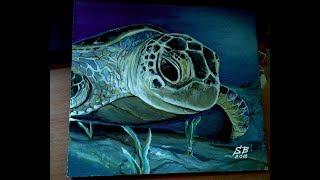 видео: Как рисовать черепаху, гиперреализм, как рисовать