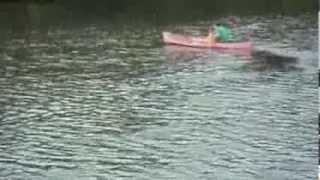 Rowing Canoe facing forward