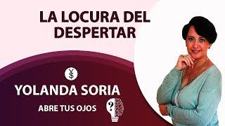 La locura del despertar   DESCIFRANDO LA MATRIX con José Vaso, Yolanda Soria, Beatriz Ramirez y Luis