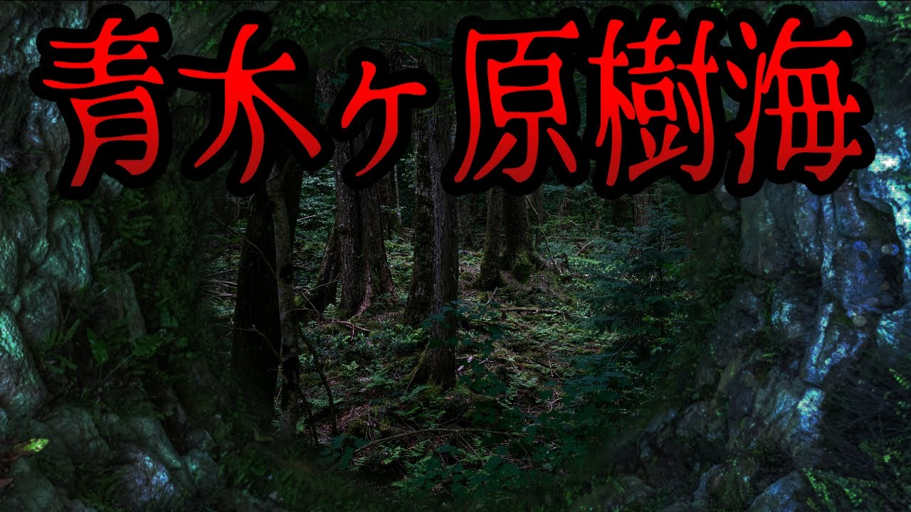 ケ 樹海 怖い 原 青木