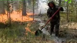 видео Ямало-Ненецкий автономный округ – общая информация