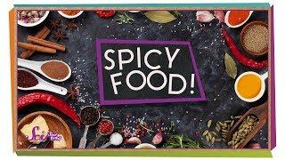 Why Does Spicy Food Taste Hot?