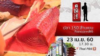 ดูให้รู้ : ปลา 150 ล้านเยนที่ตลาดปลาทสึคิจิ (23 เม.ย. 60)