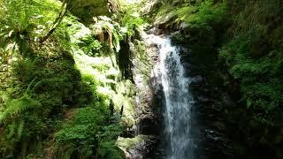 Washingtons Secret Waterfalls | DJI Footage