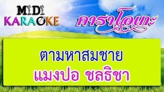 ตามหาสมชาย - แมงปอ ชลธิชา | MIDI KARAOKE มิดี้ คาราโอเกะ