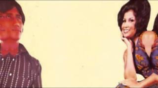PASANGAN BAHAGIA - S. AINI & M. SANI