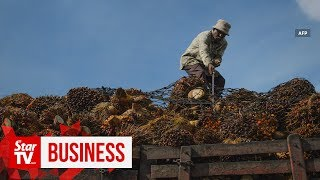 Palm oil spat unfavourable for India