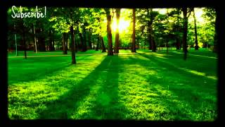 Relaxing Instrumental Music, Music for Sleep and SPA - Stafaband