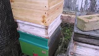 особенности подстановки магазинов под мед  - сверху медового магазина или под него