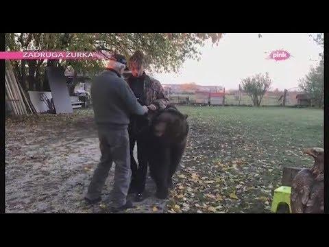 Rasta o snimanju spota 'Mrak' i druženju sa medvedom, vukom i gavranom (Ami G Show S11)