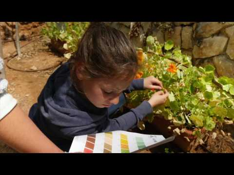Globe Program - Lev Tov School Israel 2017