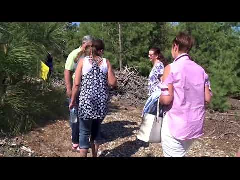 Vanderbilt Area School Forest showcase
