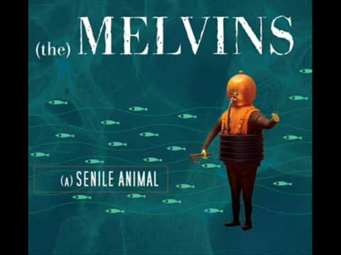 The Melvins - The talking horse