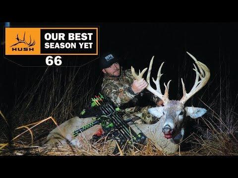 DREAM ARCHERY WHITETAIL -EP 66- BEST SEASON YET