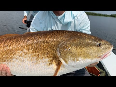 The FIRST & ONLY  Saltwater Fishing Club That Guarantees You Catch More Fish