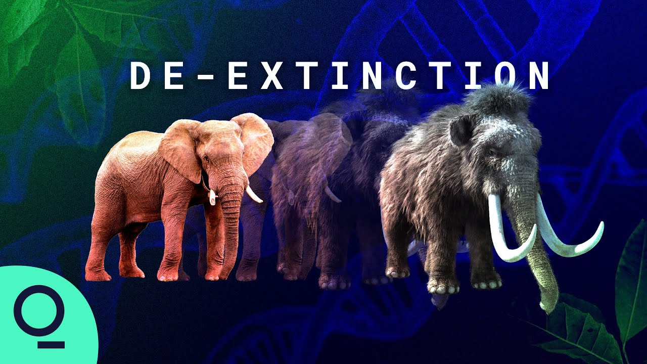 The controversial science behind woolly mammoth de-extinction