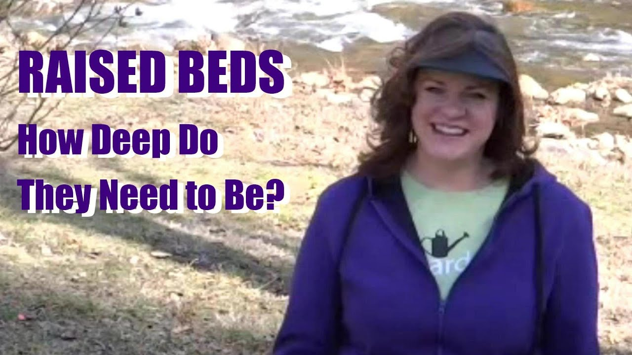 How Deep Do Raised Beds Need To Be 6 Inches Or More I Ll Explain My Experiences In This Video You