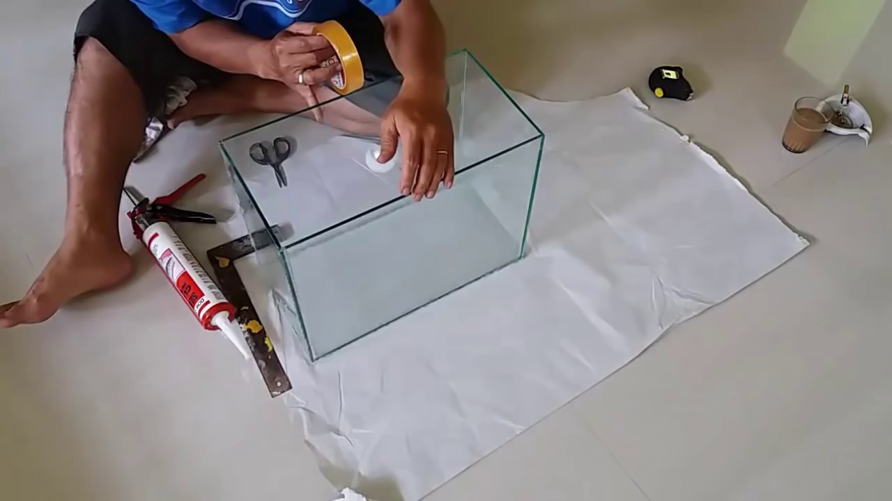 How To Build Your Own Aquarium