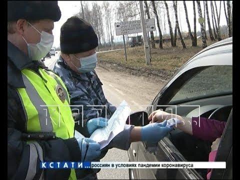 Вирусный блок-пост - в Нижегородской области ввели усиленные меры контроля на дорогах