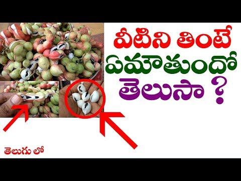వీటిని తింటే ఏమౌతుందో తెలుసా ? || About Pithecellobium dulce( Gubba kayalu )