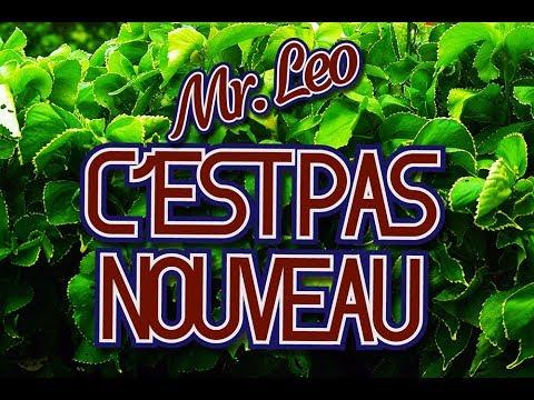 Mr. Leo - C'est pas nouveau (official video)